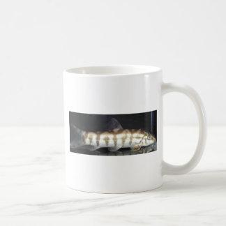 Botia Almorhae Mug
