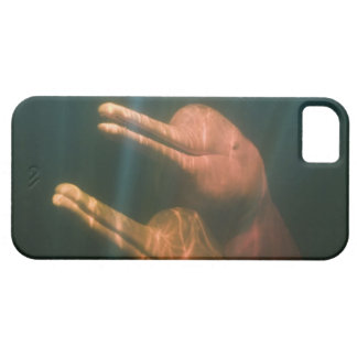Boto or Amazon River Dolphin Inia geoffrensis iPhone 5 Cover
