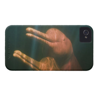 Boto, or Amazon River Dolphin (Inia geoffrensis) iPhone 4 Case