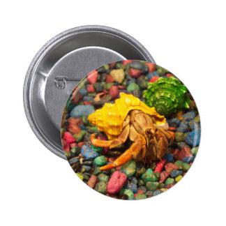 Botón 01 del cangrejo de ermitaño pin redondo de 2 pulgadas