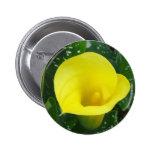 Botón amarillo de la cala pins