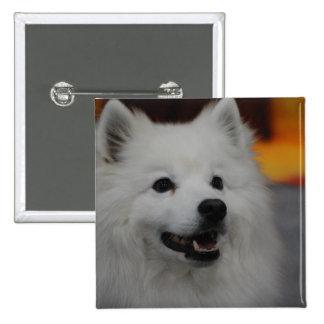 Botón americano del perro esquimal