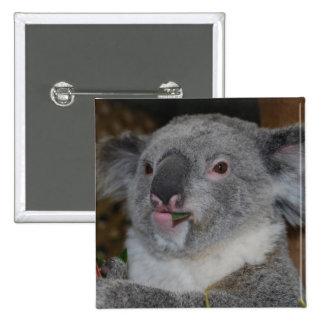Botón amistoso de la koala pin