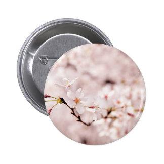 Botón blanco de Bokeh de la flor de cerezo Pin