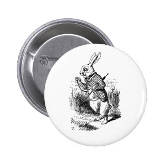 Botón blanco del conejo (gestión de tiempo) pin