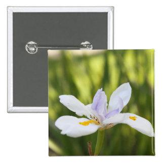 Botón blanco del iris pin