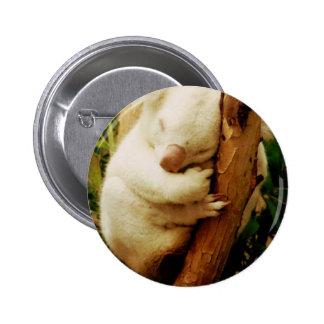 Botón blanco del oso de koala pins