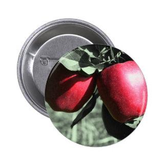 Botón blanco y negro de las manzanas rojas pins