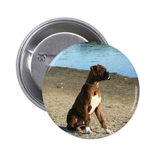 Botón Brindle del perrito del boxeador Pins