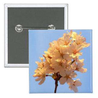 Botón cercano de las flores de cerezo