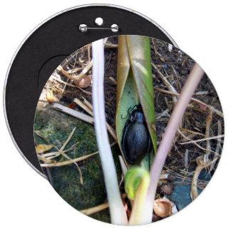 Botón combinado del escarabajo pin