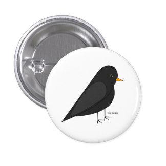Botón común del mirlo pin