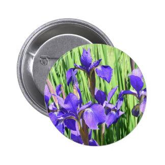 Botón con el iris azul pins