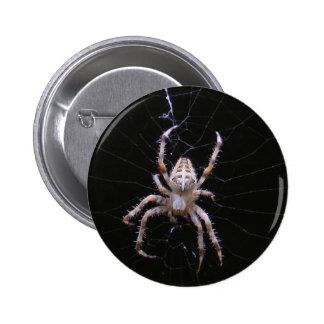 Botón cruzado del ~ de la araña