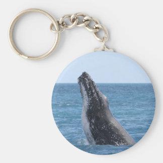 Botón cuadrado de Huggers de la ballena Llaveros Personalizados