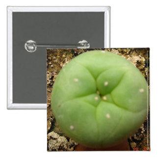 Botón cuadrado pin