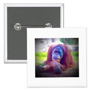botón de 2 pulgadas/orangután cuadrados del perno. pin cuadrado
