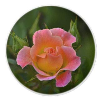 Botón de cerámica color de rosa pomo de cerámica