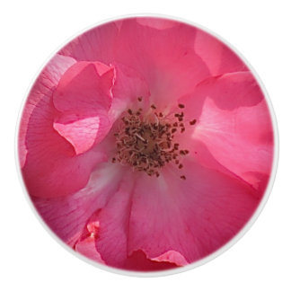 Botón de cerámica color de rosa rosado pomo de cerámica
