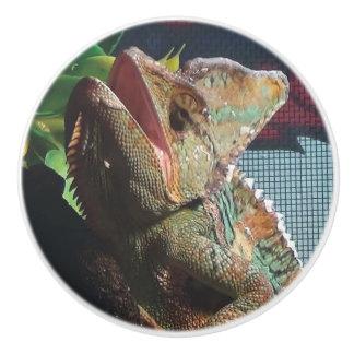 Botón de cerámica del camaleón del amante del pomo de cerámica