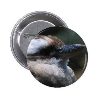Botón de Kookaburra Pins