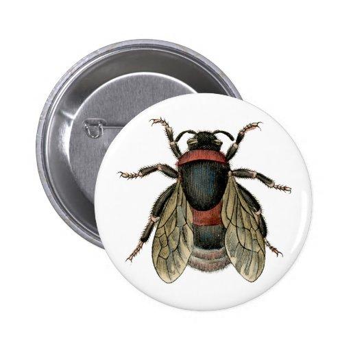 Botón de la abeja del vintage