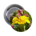 Botón de la abeja ocupada pins