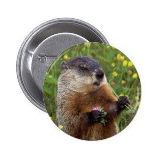 Botón de la actitud de Groundhog - más cerca Pin Redondo De 2 Pulgadas