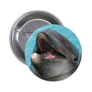 Botón de la aleta pin