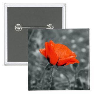 Botón de la amapola de la llave de color pin