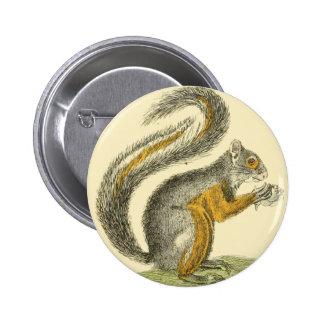 Botón de la ardilla del vintage pin redondo de 2 pulgadas
