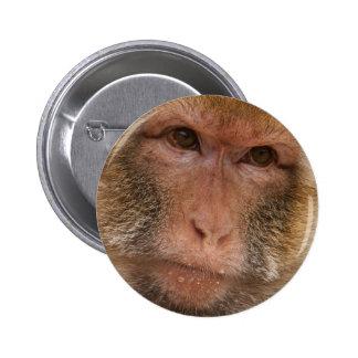 Botón de la cara del mono pin