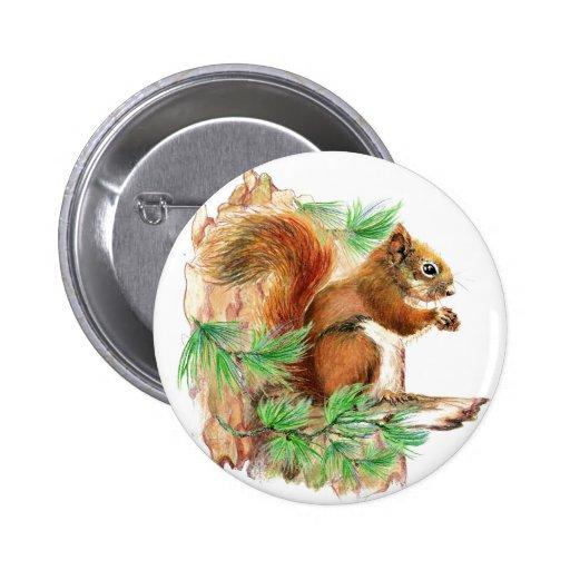 Botón de la fauna de la ardilla pin