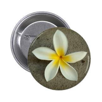 Botón de la flor de Hawaii del Plumeria Pin Redondo De 2 Pulgadas