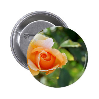 Botón de la flor del arte pin