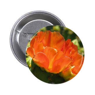 Botón de la flor del cactus pin