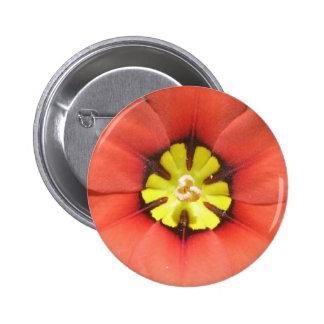 Botón de la flor del Harlequin Pins