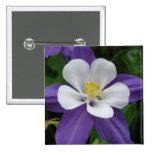 Botón de la flor púrpura y blanca de Columbine Pins