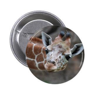 Botón de la jirafa pin redondo de 2 pulgadas