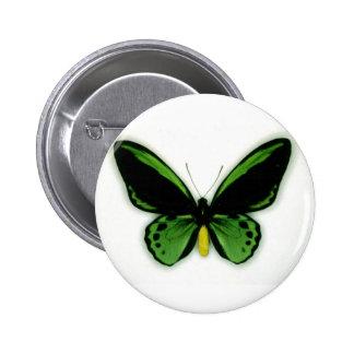 Botón de la mosca de la mantequilla pins