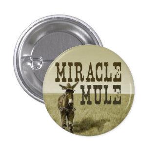 Botón de la mula del milagro