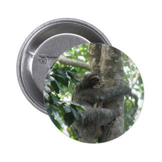 Botón de la pereza que sube pins