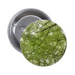 Botón de la primavera pin