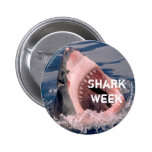 Botón de la semana del tiburón pin