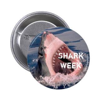 Botón de la semana del tiburón