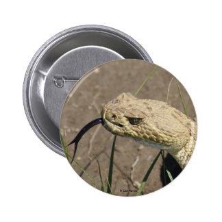 Botón de la serpiente de cascabel de pradera R0008 Pin Redondo De 2 Pulgadas