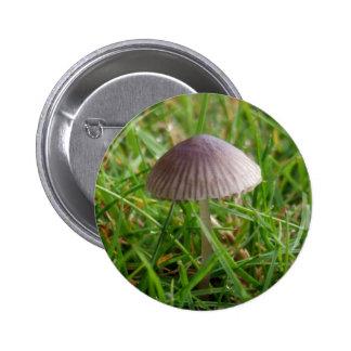 Botón de la seta pin