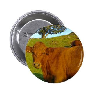Botón de la vaca de Brown Pin