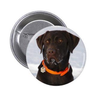 Botón de Labrador del chocolate Pin Redondo De 2 Pulgadas