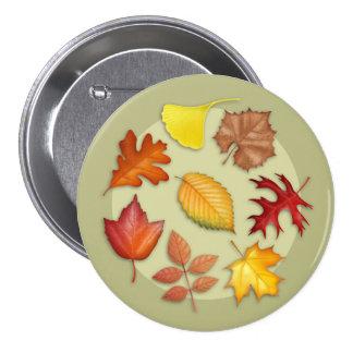 Botón de las hojas de otoño pins
